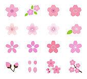 Cherry Blossom Flower Icon Set