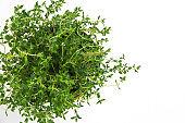 Fresh thyme herb grow in vase.
