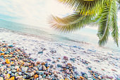 blurred natural background with sea and palm leaves