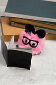 fluffy toy with a book