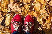 red sneakers on a yellow autumn leaves