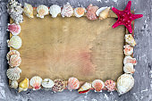 top view sea shells frame and wooden empty board