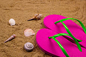 bright pink slippers and shells