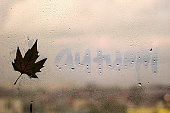 maple leaf on a window with raindrop