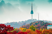 Namsan Seoul Tower and autumn maple in Korea