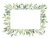 Hand drawn watercolor illustration. Botanical rectangular label of green branches and leaves. Spring mood. Floral Design elements. Perfect for invitations, greeting cards, prints, posters, packing etc