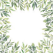 Hand drawn watercolor illustration. Botanical square frame with green branches and leaves. Spring mood. Floral Design elements. Perfect for invitations, greeting cards, prints, posters, packing etc