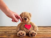 Eine Hand streichelt einen Teddybären über das Gesicht