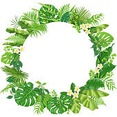 Round Frame  with Tropical Leaves and Flowers