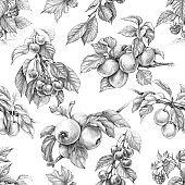 Fruit Seamless Pattern Pencil Drawing