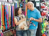 couple with dog looking for collar