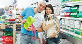 Portrait of glad couple with dog and purchases