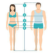 Man and women sizes measurements. Human body measurements and proportions. Flat design.