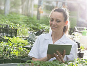 Agronomist with tablet in greenhouse