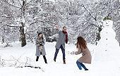 Friends having fun on snow