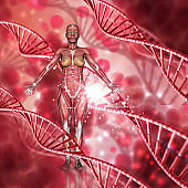 3D female medical figure with muscle map on a DNA strands background