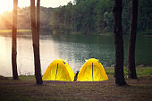 Adventures camping tourism and tent under the pine forest in sunset
