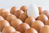 Fresh eggs lie in row on light background. Pattern eggs. Selective focus.