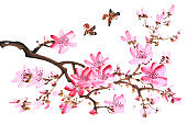 Traditional chinese painting Spring plum blossom and bird