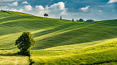 Sunny landscape from Val d'Orcia, Tuscany, Italy