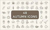 Set Of 48 Autunm Outline Icons