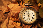 old alarm clock surrounded by dry leaves