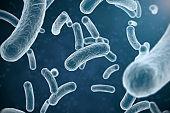 Flu H3N3 Germ Virus