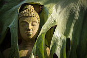 The face buddha statue close-up.Thailand.