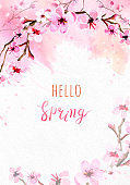 Cherry blossom on pink watercolor background