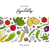 Organic food design template. Fresh vegetables. Detailed vegetarian food drawing. Farm market product. Great for label, design menu, recipes, poster, packaging design, wrapping paper.