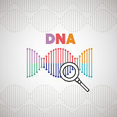 dna molecule with magnifying glass