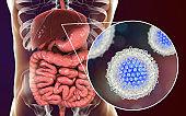 Hepatitis C virus infection medical concept