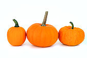 Orange pumpkins isolated