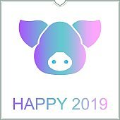 Happy new year 2019 greeting card, the year of pig in chinese calendar
