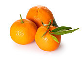 ripe organic mandarins