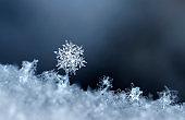 snowflake, little snowflake on the snow
