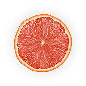 Realistic 3d Vector Illustration of sliced grapefruit. Colourful citrus. Good for packaging design and ads.