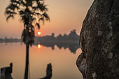 Sra Srang terrace in Angkor Wat temple complex at sunrise, Cambodia