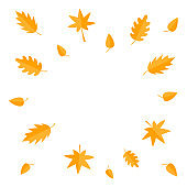 Autumn leaves frame. Yellow orange flying leaf set. Oak, maple, birch, rowan. Wind moving objects. Template for decoration. White background. Isolated. Flat design.
