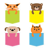 Animals in the pocket. Cute cartoon colorful dog, bear, fox, kitten kitty character. Dash line. Pet animal collection. Isolated on white. T-shirt design. Baby background. Flat