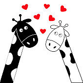 Cute cartoon black white giraffe boy and girl. Camelopard couple on date. Long neck. Funny character set. Happy family. Love greeting card with little hearts. Flat design. Heart background. Isolated.