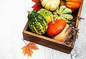 Box with pumpkins