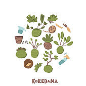 Kokedama set. Doodle vector asian plant collection