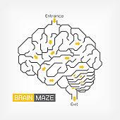 Brain maze . Creative idea concept . Outline of cerebrum cerebellum and brainstem . Flat design
