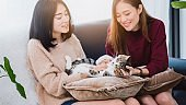 Young beautiful Asian women lesbian couple lover playing cute cat pet in living room at home with smiling face.Concept of LGBT sexuality with happy lifestyle together.