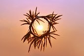 A circle from the grass made from hand in sky, the sun in middle, with colorful of sunset light.