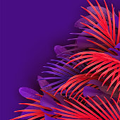 Tropical leaf background. Branch palm realistic. Leaves and branches of palm trees