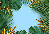 Branch palm realistic. Leaves and branches of palm trees. Tropical leaf background.