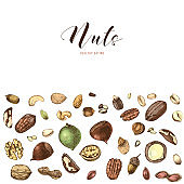 Background with hand drawn edible nuts