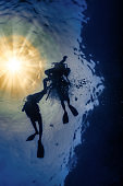 Scuba Divers Silhouette and sunbeam underwater low angle view